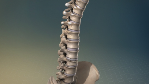 degenerative disc disease pain specialists denver co