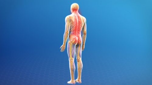 Adhesiolysis Treatment pain denver co
